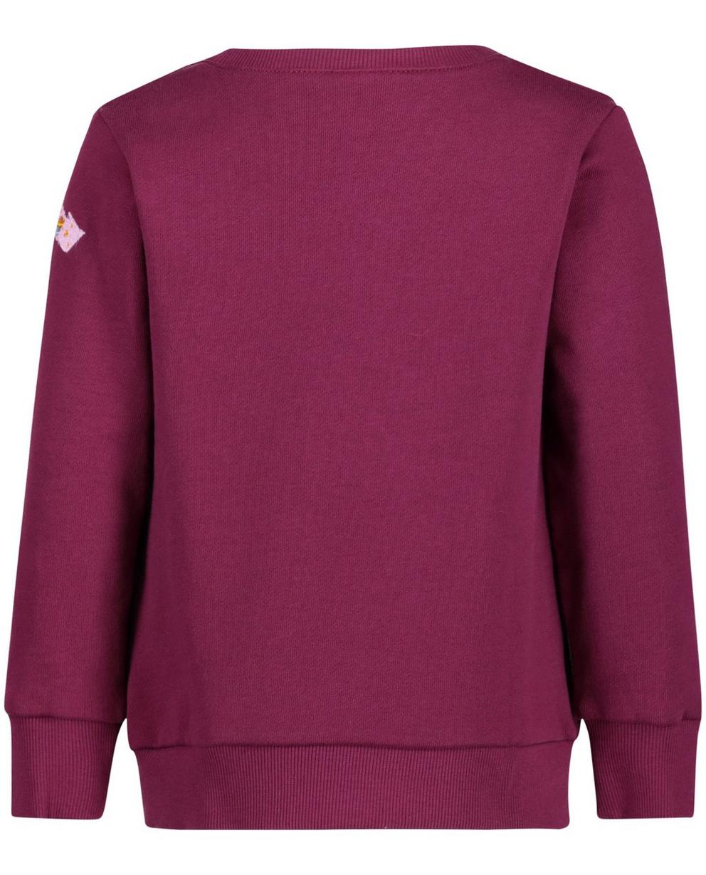 Sweaters - RDM - Purperen sweater
